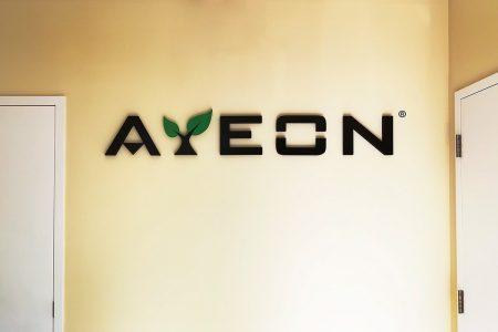Ayeon 3D Letters